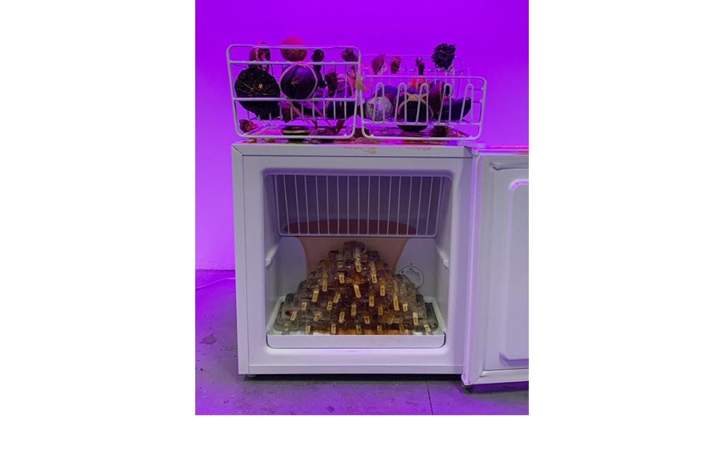 Mo Kong, Seeking The Common Ground, 2019 - Freezer, ghiaccioli fatti a mano con coriandoli di giornale, scolapiatti, frutta tropicale conservata, cubo di frutta congelato, 45 x 48 x 68 cm