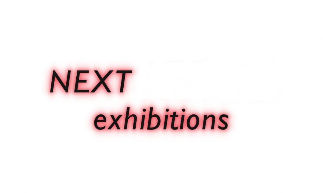 Artericambi's Exhibitions Program
