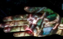 NINA FIOCCO  |  Indizi per storie di terra  |  Museo di Storia Naturale  |  15 Luglio 2021 – Ore 18.00